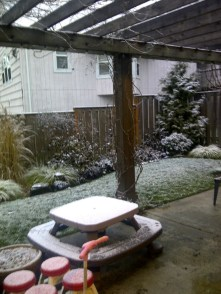 Snow in Portland 2