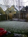 Snow in Portland 3
