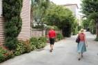 Walking Tour of Charleston
