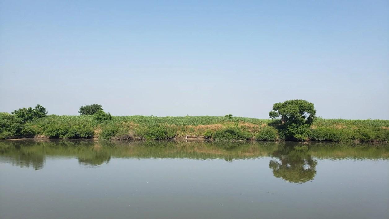 のどかな風景の渡良瀬川