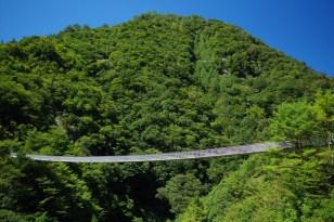 Umenoki-Todoro suspension bridge -The only way to walk to the falls.