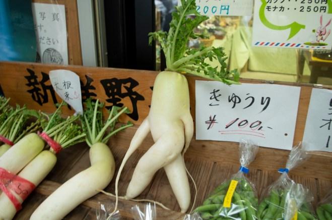Daikon, Japanese radish