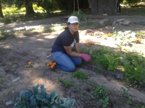 Elizabeth thinning carrots.