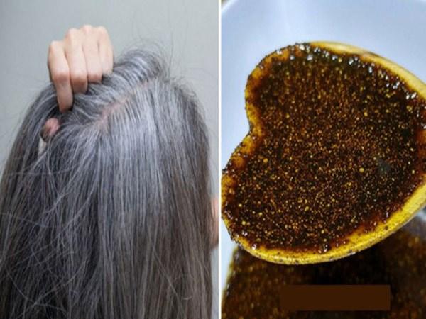 નારીયેલ તેલમા આ એક વસ્તુ મિક્સ કરી માત્ર ૧ અઠવાડિયા માટે લગાવો, સફેદ વાળ  મૂળમાંથી હમેશા માટે થઈ જશે કાળા - Gokhlo