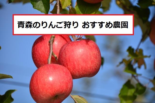 青森のりんご狩りオススメスポット7つ
