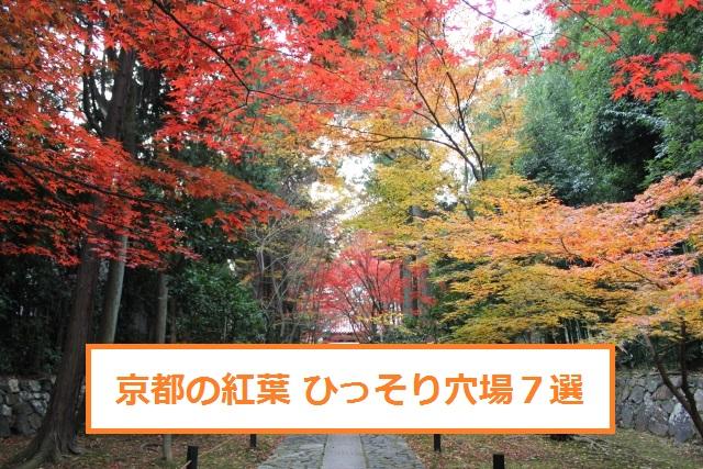 京都紅葉人が少ない穴場7選