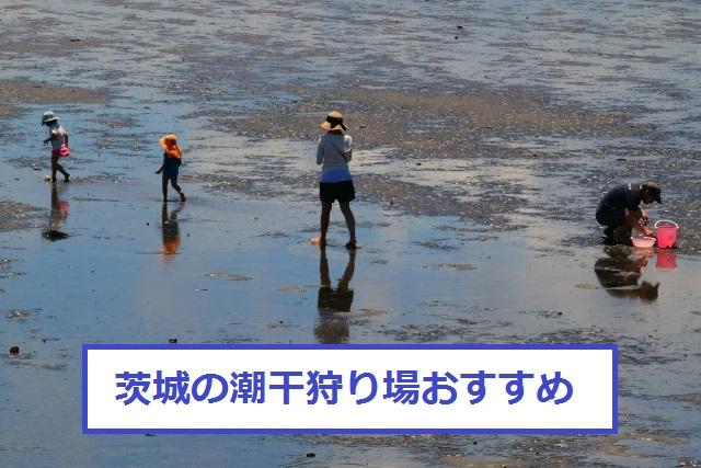 茨城の潮干狩り穴場おすすめ4選