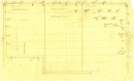 Garden plan, c. 1940s
