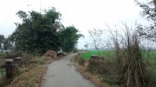 Village road, where I rode cycle.