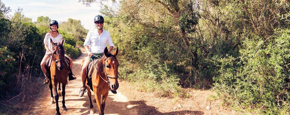 מקומות טיול ברמת הגולן ומגוון אטרקציות של רכיבה על סוס או טרקטורון שטח