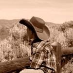Bethany Steadman Boy on Fence