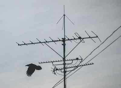 Antenna Service in Broadbeach