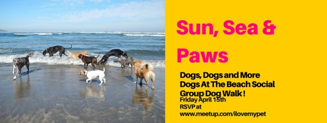 Sun Seat & Paws - Social Group Dog Walk FREE EVENT ! RSVP NOW.