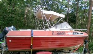 Bimini Top with frames