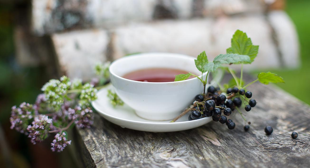 Рецепты с использованием чая. Русский чай с черносмородиновым листом