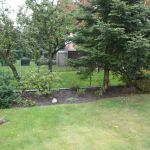 E-Wurf Jona neues Zuhause in Nordhorn 09