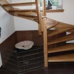 G-Wurf Marley neues Zuhause in Ankum 10