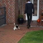 G-Wurf Nela neues Zuhause in Papenburg 04