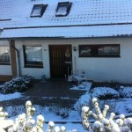 I-Wurf Icedancer neues Zuhause in Marienhagen 01