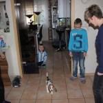 I-Wurf Icerevue neues Zuhause in Senden 06