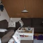 J- Wurf Japser neues Zuhause in Stuhr 11