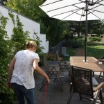 J-Wurf Jolene neues Zuhause 13