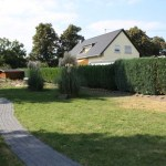 J-Wurf Jolene neues Zuhause 18