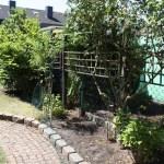 K-Wurf Keltic Kando neues Zuhause in Willich 04