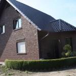 K-Wurf Kool Kato neues Zuhause in Sögel 04