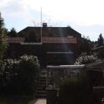 L-Wurf Limited neues Zuhause in Hambüren 11