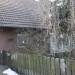 L-Wurf Lover neues Zuhause in Eickeloh 01