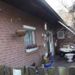 L-Wurf Lover neues Zuhause in Eickeloh 04