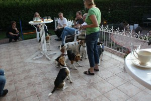 Welpen-Treffen G-Wurf 119
