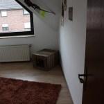 M-Wurf Mr.Mighty Neues Zuhause in Schwalmtal 14