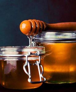 honeybell-spritzer-colour