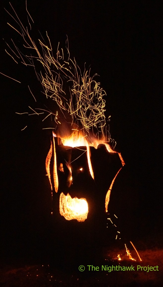 fire_party-14