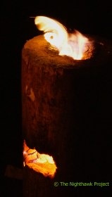 fire_party-7