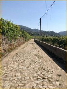 Buen Camino Santiago de Compostelle (53)