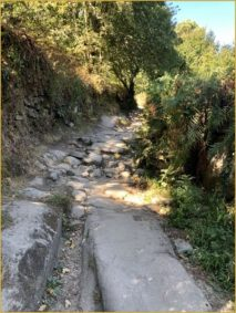 Buen Camino Santiago de Compostelle (87)