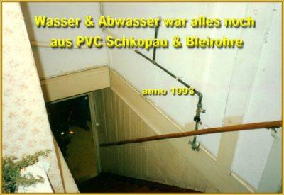 Hirschbilder aus dem Jahre 1992 (24)