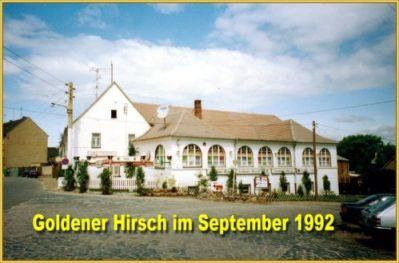 Hirschbilder aus dem Jahre 1992 (4)