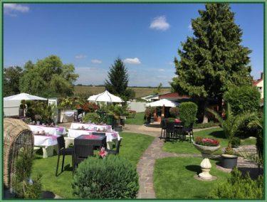 Veranstaltung Buissenes Garten 40 PAX (7)