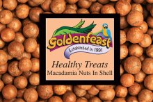 Macadamia-shell-healthy-treats take 2 (1)