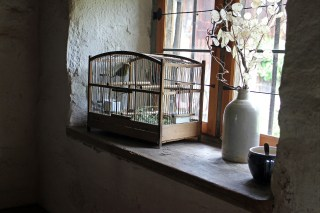 bird in wooden bird cage