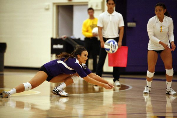 Jessica Nicerio of the San Francisco State Gators digs the ball back into play during a match against the Cal Poly Pomona Broncos. The Gators won the match 3-2 Friday, Sept. 26, 2014. Martin Bustamante / Xpress.