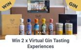 Win a Virtual Gin Tasting Experience
