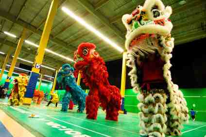 jing wo lion dance calgary 2014 chinese new year fortune foods cutting zone fortune foods t-pot tpot resaturant
