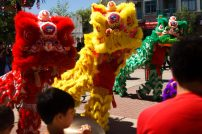 jing wo lion dance calgary 2015 chinese quickly bubble tea