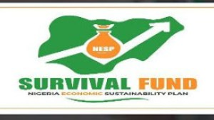 Check Out Top Programmes Launched By FG To Support Nigerian Youth