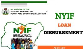 NYIF Disbursement Begins: See How To Check Nigerian Youth Investment Fund Loan Status